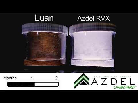 Azdel Lauan 2-Month Mold Time-Lapse