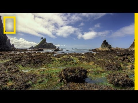 Olympic National Park | America's National Parks