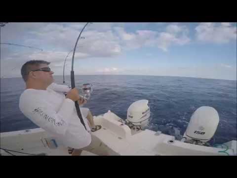 Marathon Humps Tuna Snowy Grouper Tilefish 5/13/16
