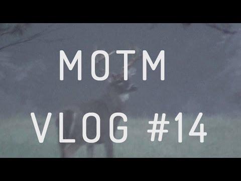 Exploring Charlotte North Carolina at Christmastime | MOTM RVLife VLOG #14